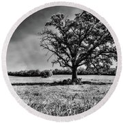 Lone Oak Tree In Black And White Round Beach Towel