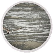 Lone Sea Gull Round Beach Towel