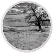 Lone Tree And Cows 2 Round Beach Towel