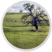 Lone Tree And Cows Round Beach Towel