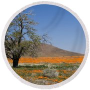 Lone Tree In The Poppies Round Beach Towel