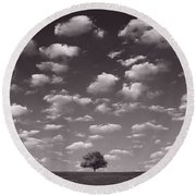 Lone Tree Morning In B And W Round Beach Towel