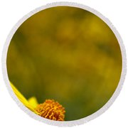 Lone Wildflower - Yellow Round Beach Towel