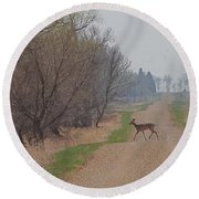 Lonely Deer Crossing Round Beach Towel
