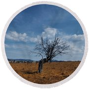 Lonely Dry Tree In A Field Round Beach Towel