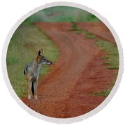 Lonely Jackal Round Beach Towel