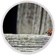 Lonely Ladybug Round Beach Towel