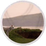 Lonely Little Lamb Round Beach Towel
