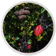 Lonely Red Leaf Round Beach Towel