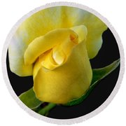 Lonely Teardrop Yellow Rose Bud Round Beach Towel