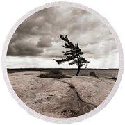 Lonely Tree Round Beach Towel