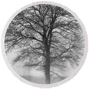 Lonely Winter Tree Round Beach Towel