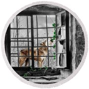 Lonely Wolf Round Beach Towel