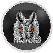 Long Eared Owl 2 Round Beach Towel