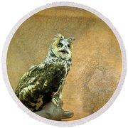 Long Eared Owl Round Beach Towel