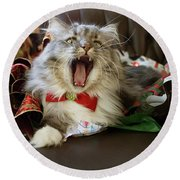 Long Haired Grey And White A Cat Yawns Amid Christmas Wrapping Paper Round Beach Towel