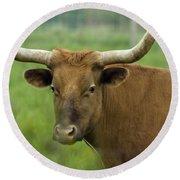 Long Horn Cow Round Beach Towel