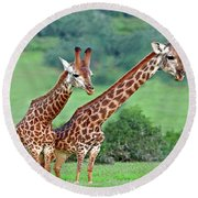 Long Necks Together Round Beach Towel