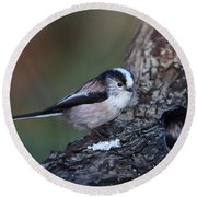Long-tailed Tit Round Beach Towel