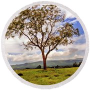 Long Tree Shenandoah Valley West Virginia  Round Beach Towel