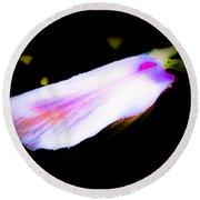 Long Unopened Hibiscus Flower Round Beach Towel