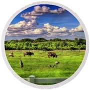 Longhorns At The Ranch Round Beach Towel