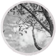 Look Up Into The Sky Round Beach Towel
