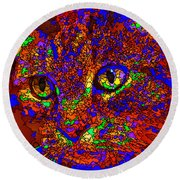 Looking For An Owner. Pet Series Round Beach Towel