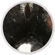 Looking Through The Hollow Trunk Of An Ancient Fallen Sequoia In Kings Canyon California Round Beach Towel