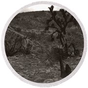 Looking To The Earth Round Beach Towel