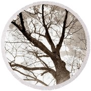 Looking Up In Sepia Round Beach Towel