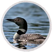 Loon In Blue Waters Round Beach Towel