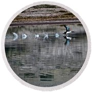 Loon In Greenland Round Beach Towel