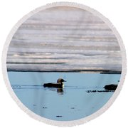 Loon On The Arctic Round Beach Towel