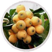 Loquat Exotic Tropical Fruit 4 Round Beach Towel