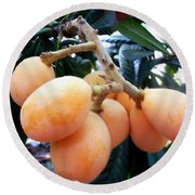 Loquat Exotic Tropical Fruit  Round Beach Towel