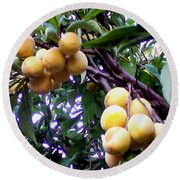 Loquats In The Tree 1 Round Beach Towel