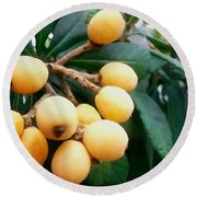 Loquats In The Tree 3 Round Beach Towel