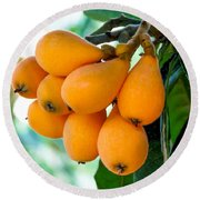 Loquats In The Tree 5 Round Beach Towel