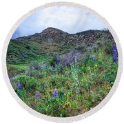 Lost Canyon Wildflowers Round Beach Towel