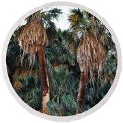 Thousand Palms Oasis  Round Beach Towel