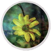 Lost Wild Flower In The Shadows 5771 Ldp_2 Round Beach Towel
