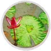 Lotus Flower Bloom In Pink 1 Round Beach Towel