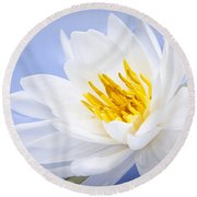 Lotus Flower Round Beach Towel by Elena Elisseeva