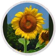 Louisa, Va. Sunflower 6 Round Beach Towel