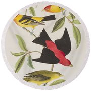 Louisiana Tanager Or Scarlet Tanager  Round Beach Towel
