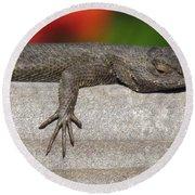 Lounge Lizard Round Beach Towel