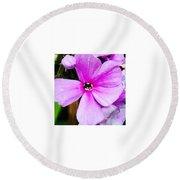 Love Any Pink Flower  Round Beach Towel