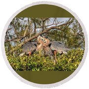 Love Birds - Great Blue Heron Round Beach Towel