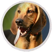 Loveable Hound Round Beach Towel